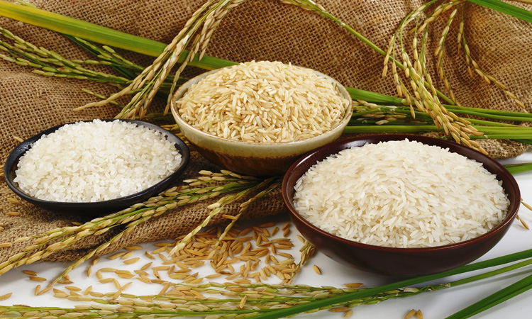 تشخیص برنج خوب