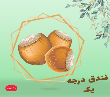 banner-hazelnuts